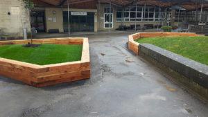 redesign of school quadrangle